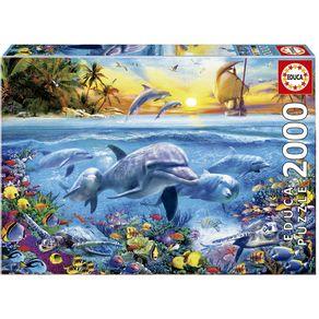 Familia-de-Golfinhos--7-