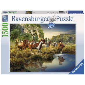 03655---P1500-Cavalos-Selvagens