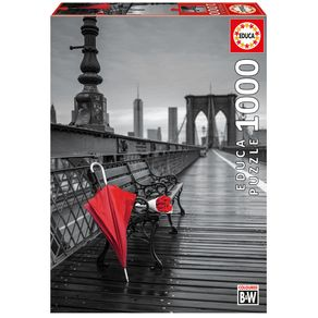17691_P1000-Ponte-do-Brooklin