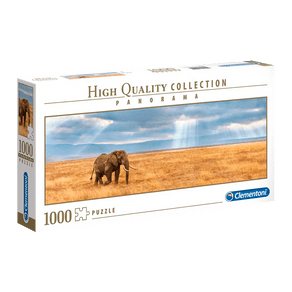 4021-P1000-Panorama-Elefante